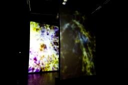 Digital Choc Prix .01 – A.I.R. Goh Uozumi