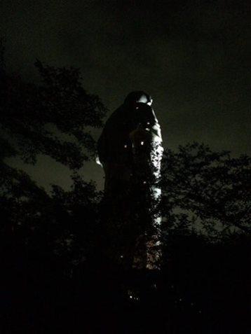 de nuit