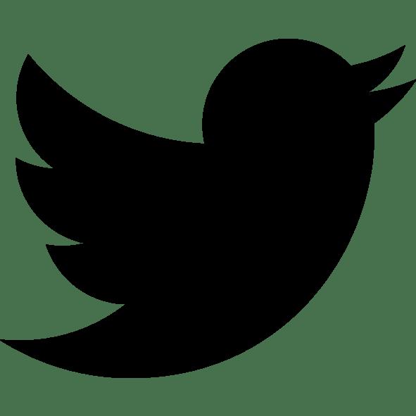 """Résultat de recherche d'images pour """"twitter logo noir"""""""